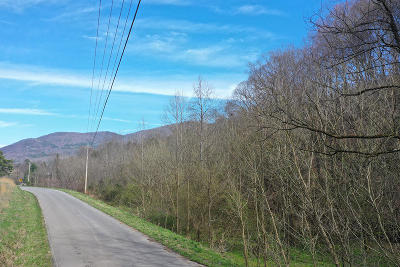 Cocke County Residential Lots & Land For Sale: 2371 Dark Hollow Rd
