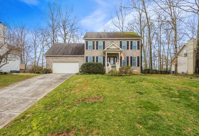Knoxville Single Family Home For Sale: 8524 Barbee Lane