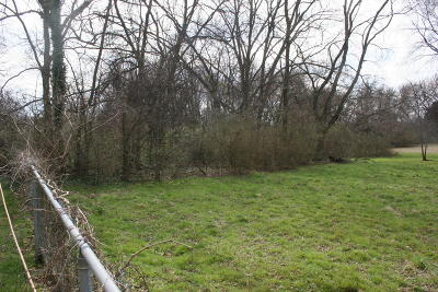 Sweetwater Residential Lots & Land For Sale: 207b Fair St