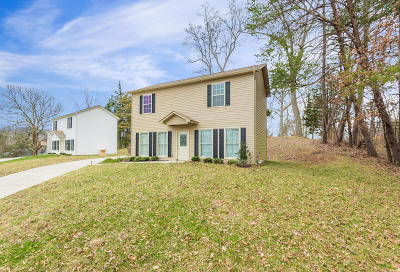 Maynardville Single Family Home For Sale: 102 Windy Way