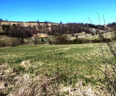 New Tazewell Residential Lots & Land For Sale: Vista Drive