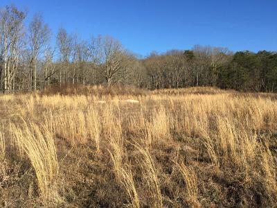 Lenoir City Residential Lots & Land For Sale: 6200 Waller Ferry Road