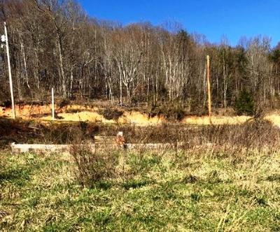 New Tazewell Residential Lots & Land For Sale: 517 Minton Hollow Rd