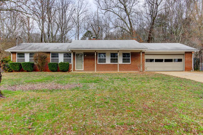 Knoxville Single Family Home For Sale: 509 Cappy Drive