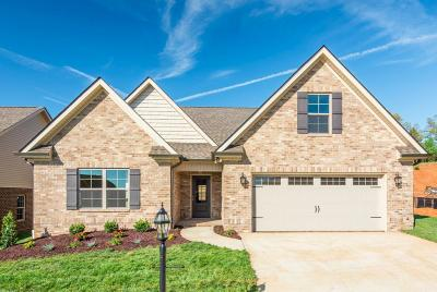 Knoxville Single Family Home For Sale: 3425 Windmead Lane