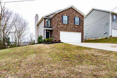 Powell Single Family Home For Sale: 8511 Childress Rd