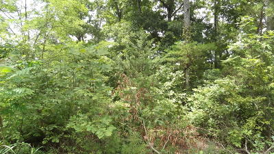 White Pine Residential Lots & Land For Sale: Lakefront Place
