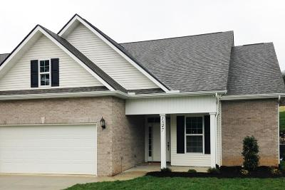 Knoxville Condo/Townhouse For Sale: 1547 Graybrook Lane