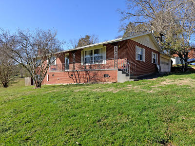 Knoxville Single Family Home For Sale: 2525 Tipton Station Rd