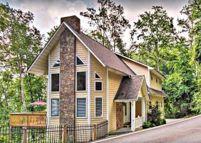 Gatlinburg Single Family Home For Sale: 1263 Ski View Drive