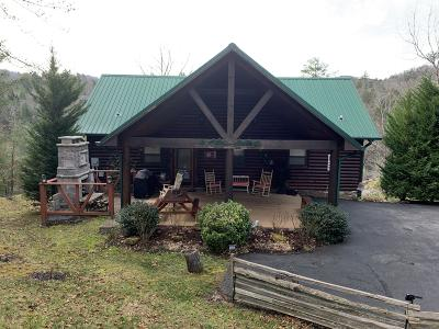 Sevier County Single Family Home For Sale: 2214 Dogwood Cove Way