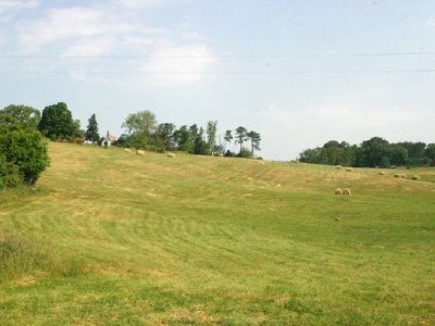 Jefferson City Residential Lots & Land For Sale: Lot 8 Forgety Rd