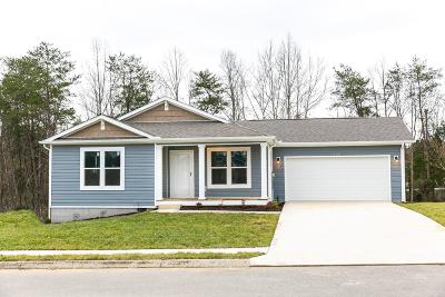 Knoxville Single Family Home For Sale: 332 Contentment Lane