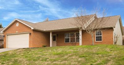 Maryville Single Family Home For Sale: 1039 Willow Creek Circle