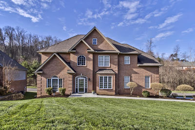 Knoxville Single Family Home For Sale: 1939 Cascade Falls Lane