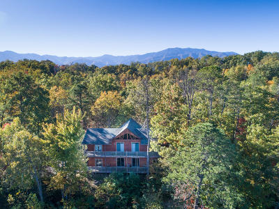 Sevierville Single Family Home For Sale: 4729 Riversong Ridge Way
