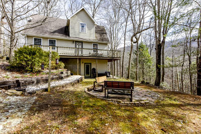 Single Family Home For Sale: 4039 Barb Hollow Rd