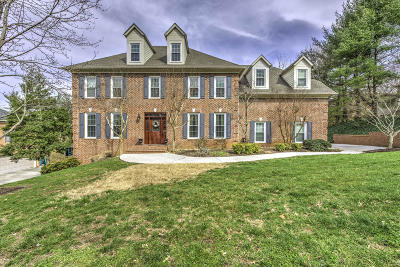 Knoxville Single Family Home For Sale: 858 Ivy Point Lane Lane