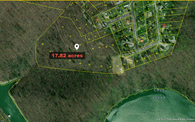 Jacksboro Residential Lots & Land For Sale: 223 Lakeview Lane