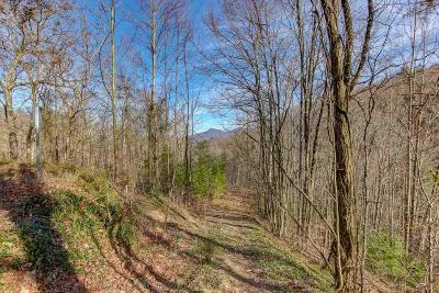 Sevier County Residential Lots & Land For Sale: Lot 3 Ski Mountain Rd