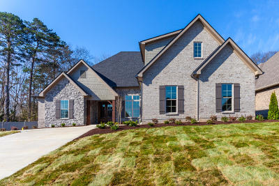 Knoxville Single Family Home For Sale: 1464 Turning Leaf Lane
