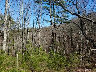 Maryville Residential Lots & Land For Sale: 716 Jewell Weed Way