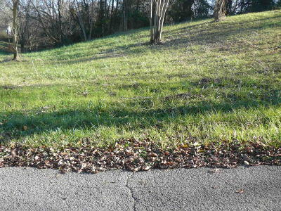 Tazewell Residential Lots & Land For Sale: Overton Drive