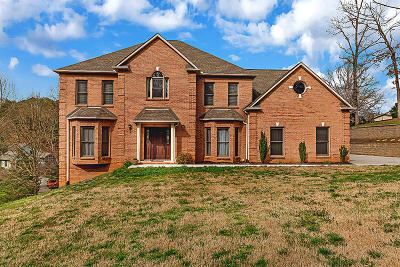 Alcoa, Friendsville, Greenback, Knoxville, Louisville, Maryville, Rockford, Sevierville, Seymour, Tallassee, Townsend, Walland, Lenoir City, Loudon, Philadelphia, Sweetwater, Vonore, Coker Creek, Englewood, Madisonville, Reliance, Tellico Plains Single Family Home For Sale: 1028 Chula Vista Drive