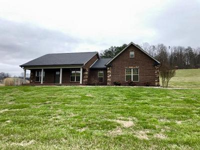 New Tazewell Single Family Home For Sale: 3231 Goin Rd