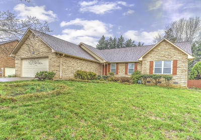 Maryville Single Family Home For Sale: 929 Meadow Oaks Drive