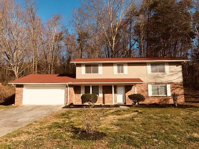 Knoxville Single Family Home For Sale: 8909 Grantop Drive