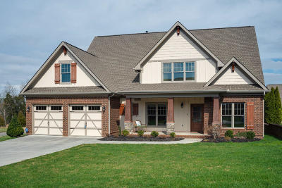 Single Family Home For Sale: 2381 Misty Mountain Circle