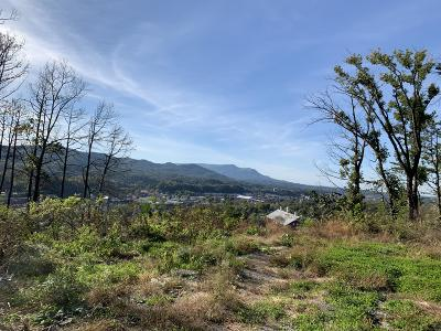 Pigeon Forge Residential Lots & Land For Sale: Laurelwood Drive