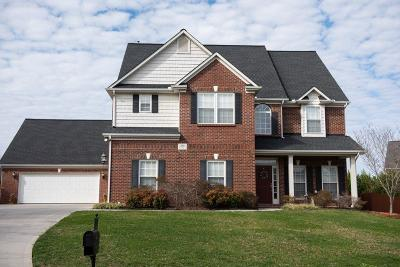 Knoxville Single Family Home For Sale: 12823 Night Heron Drive