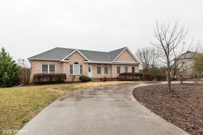 Sevierville Single Family Home For Sale: 1648 Riceland Drive