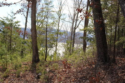 Anderson County, Campbell County, Claiborne County, Grainger County, Union County Residential Lots & Land For Sale: Lot 156 Lakeview Drive