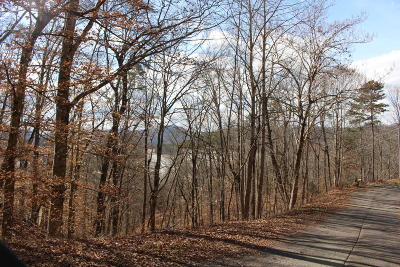 Anderson County, Campbell County, Claiborne County, Grainger County, Union County Residential Lots & Land For Sale: Lot 86 Grandpas Rdg