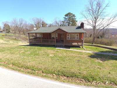 Kingston Single Family Home For Sale: 520 Patton Ferry Rd