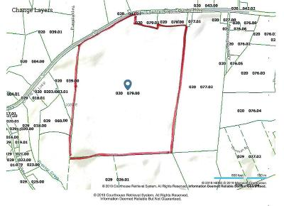 Residential Lots & Land For Sale: 6595 Clay County Hwy