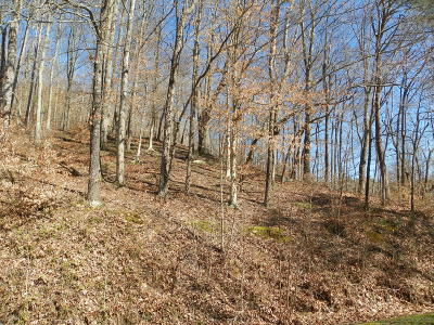 Jellico Residential Lots & Land For Sale: Ashley Lane