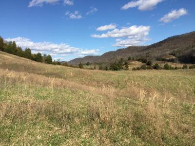 Rogersville Residential Lots & Land For Sale: Webster Valley Rd