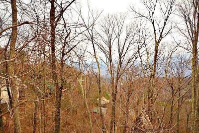 Gatlinburg Residential Lots & Land For Sale: 001-002 Ski View Drive