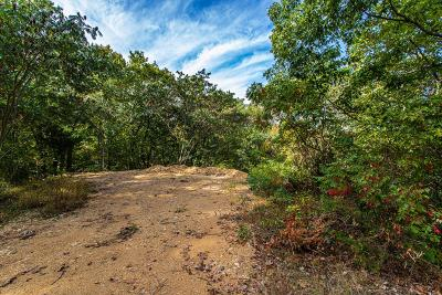 Pigeon Forge Residential Lots & Land For Sale: 12-C Monte Wood Circle