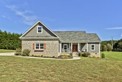 Knoxville Single Family Home For Sale: 1912 Serene Cove Way