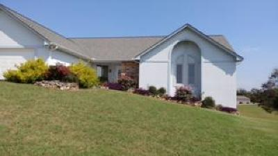 Lenoir City Single Family Home For Sale: 4206 Shaw Ferry Rd