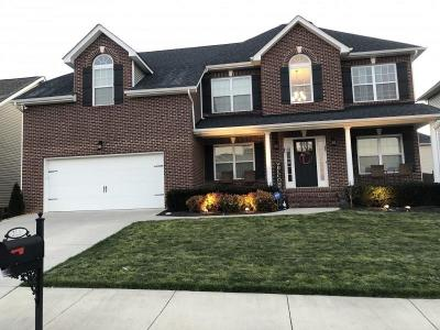 Knoxville Single Family Home For Sale: 2530 Sparkling Star Lane