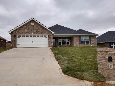 Maryville Single Family Home For Sale: 1018 Elsborn Ridge Rd