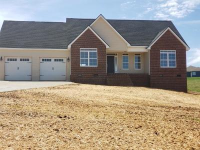 Dandridge, Sevierville Single Family Home For Sale: 537 Mountain Vista Trail