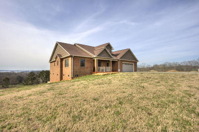 Grainger County Single Family Home For Sale: 386 Tumbleweed Tr