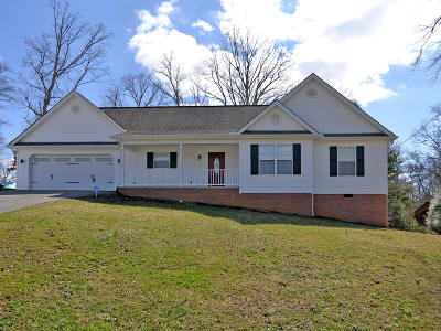 Strawberry Plains Single Family Home For Sale: 821 Asheville Hwy